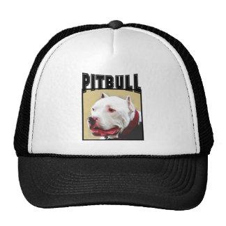 Pitbull blanco gorros bordados