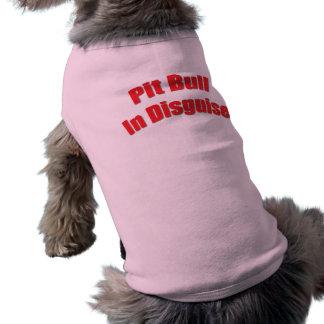 Pitbull en disfraz ropa de perro