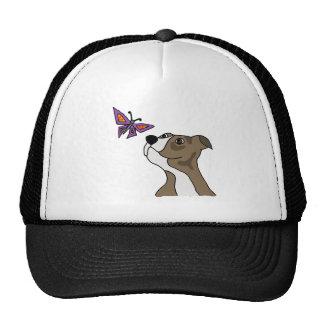 Pitbull gris y blanco divertido y mariposa gorra