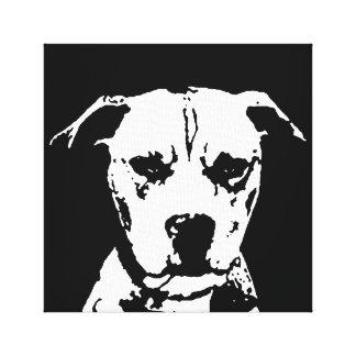 Pitbull negro y el blanco envolvieron la impresión