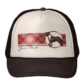 Pitbull rojo gorra