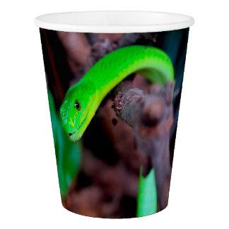 Pitón de la serpiente verde vaso de papel