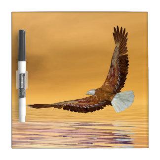 Pizarra Blanca Eagle que vuela al sol - 3D rinden