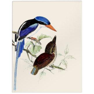 Pizarra Blanca Los animales de la fauna de los pájaros del martín