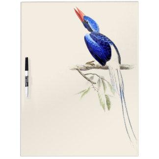 Pizarra Blanca Los animales de la fauna del pájaro del martín