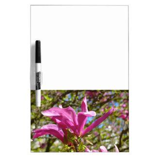 Pizarra Blanca Magnolia púrpura floreciente 01,2