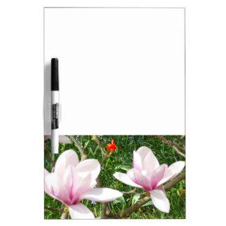 Pizarra Blanca Magnolia rosada floreciente 01,3