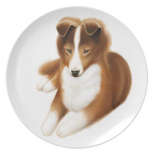 Placa amistosa del perrito del perro pastor de platos
