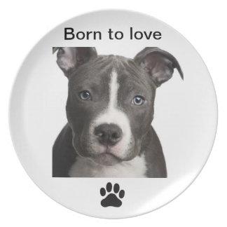 Placa con la impresión del perro y de la pata plato