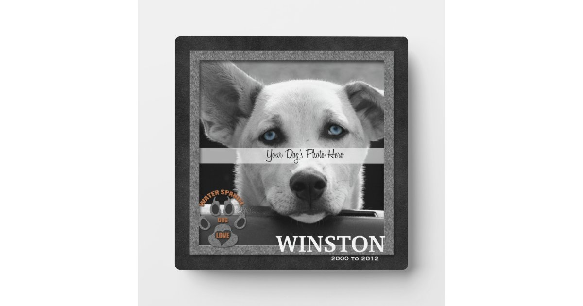 Placa conmemorativa de la raza del perro del perro   Zazzle.es