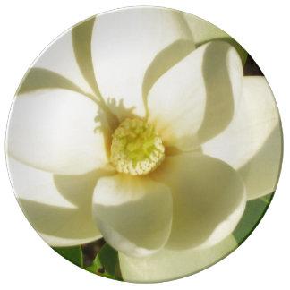 Placa de colectores del flor de la magnolia que plato de porcelana