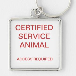 Placa de identificación certificada del animal del llavero cuadrado plateado