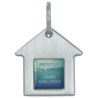 Placa de identificación coloreada plata de la casa