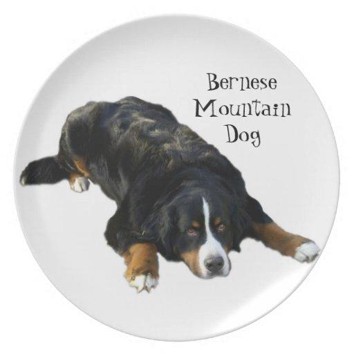 Placa de la actitud de la manta del perro de monta plato para fiesta