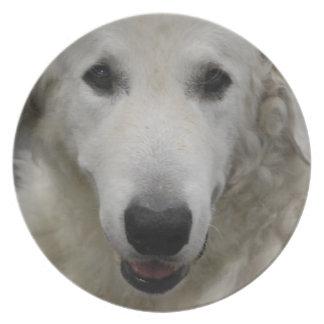 Placa de la raza del perro de Kuvasz Plato De Cena