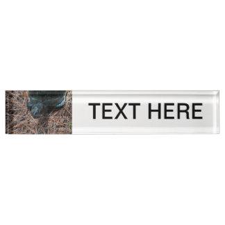 Placa De Nombre animal observado rojo del reptil de la tortuga de