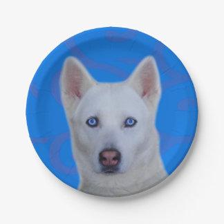 Placa de papel del husky siberiano blanco plato de papel