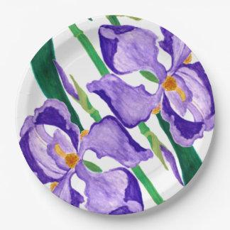 Placa de papel del iris púrpura diagonal plato de papel