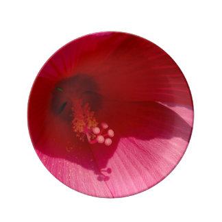 Placa decorativa de la porcelana de la flor rosada plato de porcelana