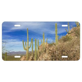 Placa del desierto de Arizona