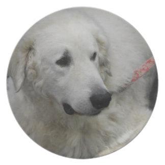 Placa del perro de Kuvasz Plato Para Fiesta