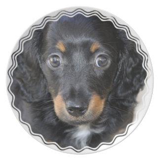 Placa del perro de perrito de Daschund Plato De Cena