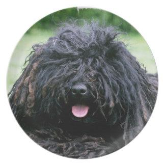 Placa del perro de Puli Platos Para Fiestas