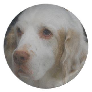 Placa del perro del perro de aguas de Clumber Platos De Comidas