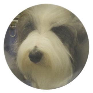 Placa del perro pastor plato de cena