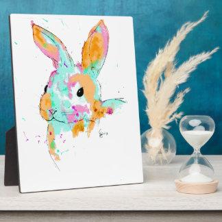 Placa Expositora Alicia en diseños del color de agua del país de