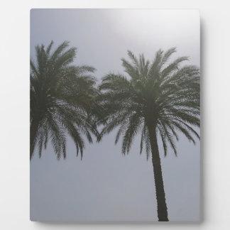 Placa Expositora Árboles Egipto de Sun