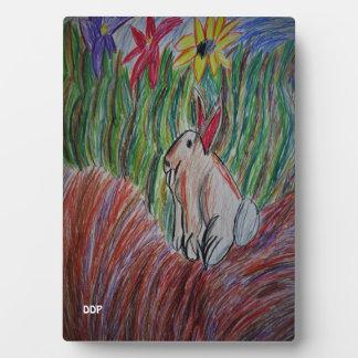 Placa Expositora arte del conejito