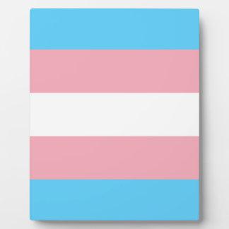 Placa Expositora Bandera del orgullo del transexual - arco iris del
