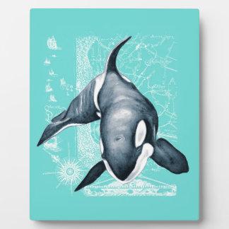 Placa Expositora Blanco del trullo de la orca