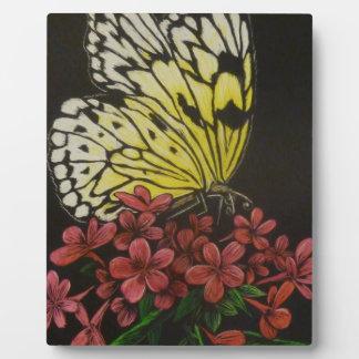 Placa Expositora butterflyetsy