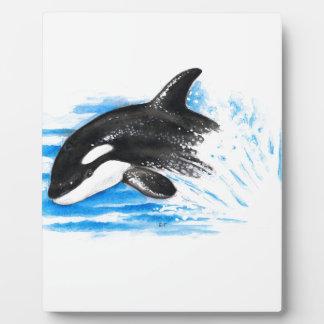 Placa Expositora El jugar de la orca
