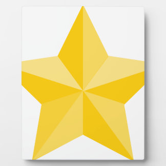 Placa Expositora Estrella