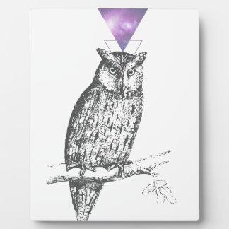 Placa Expositora Galaxy owl 1