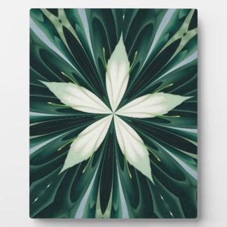 Placa Expositora Hojas del blanco en un caleidoscopio verde del