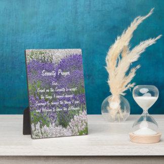 Placa Expositora Jardín de la lavanda del rezo de la serenidad