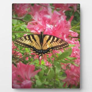 Placa Expositora La mariposa de Swallowtail se sienta en azaleas
