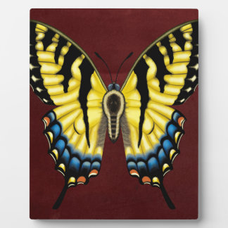 Placa Expositora Mariposa de Swallowtail del tigre