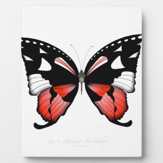 Placa Expositora mariposa del rojo del higo 4 por los fernandes