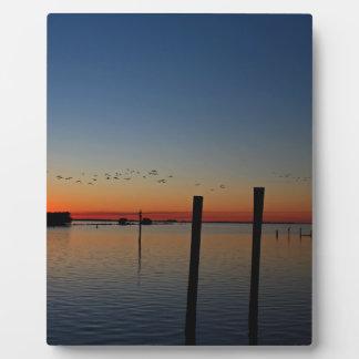 Placa Expositora Migración de la puesta del sol