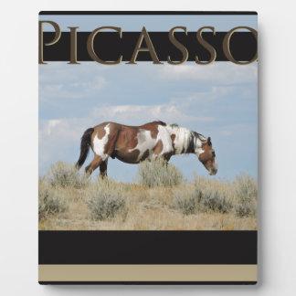 Placa Expositora Picasso, semental del lavabo de la arena, Colorado