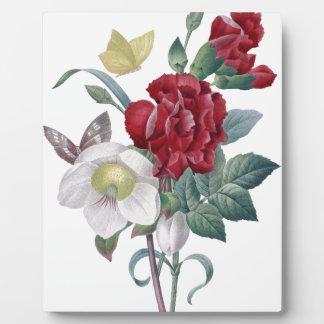 Placa Expositora ramo de la anémona y de los claveles