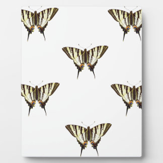 Placa Expositora separe hacia fuera las mariposas