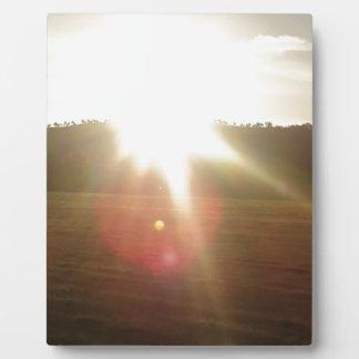 Placa Expositora Sun de oro 2