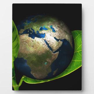 Placa Expositora Tierra