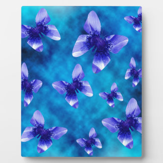 Placa Expositora Verano azul de la mariposa